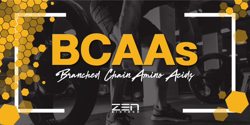 สารสกัด BCAAs (Branched Chain Amino Acids)
