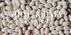 สารสกัดจากถั่วขาว ยับยั้งการย่อยน้ำตาลเป็นไขมัน