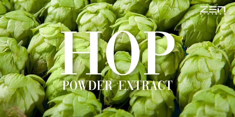 สารสกัดจากฮอปส์ Hop Powder Extract