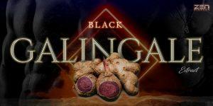 สารสกัดจากกระชายดำ Black Galingale Extract