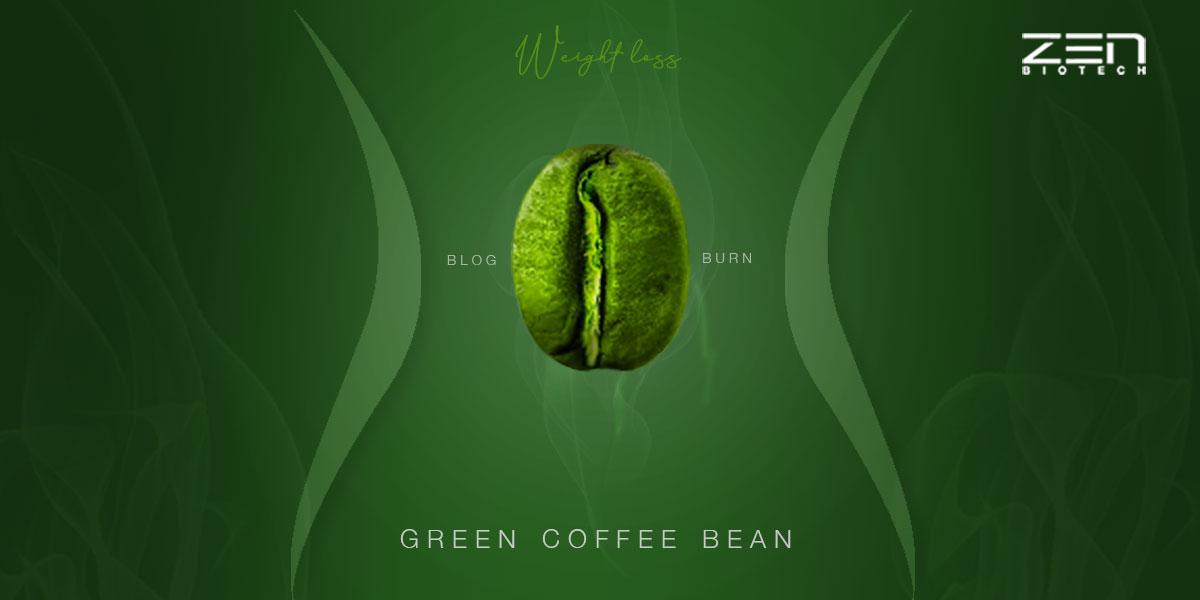 สารสกัดจากเมล็ดกาแฟสีเขียว (GCBE)