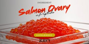 สารสกัดคอลลาเจน จากไข่ปลาแซลมอน Salmon Collagen Pepptid